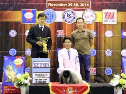 The Mall Toy Dog Championship Dog Show 7/2014_AB1