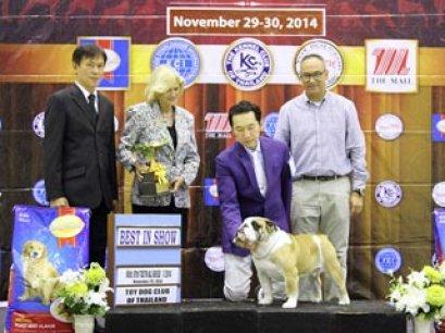 The Mall Toy Dog Championship Dog Show 7/2014_AB2