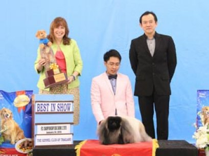 Champion Of Champions Dog Show 2015_AB2