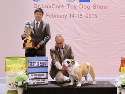 Central Toy Dog Championship Dog Show 1/2015_AB1