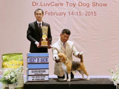 Central Toy Dog Championship Dog Show 1/2015_AB3