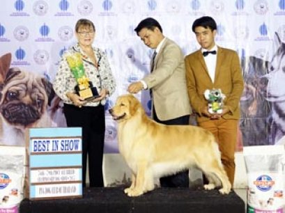 TAWANNA NGAMWONGWAN NATIONAL DOG SHOW 2015_AB4