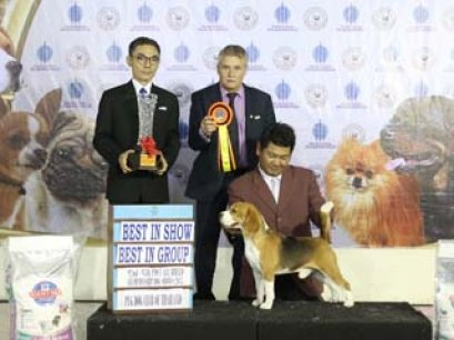 95th PDCT ALL BREED CHAMPIONSHIP DOG SHOW