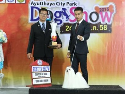 36th TCTH ALL BREED CHAMPIONSHIP DOG SHOW
