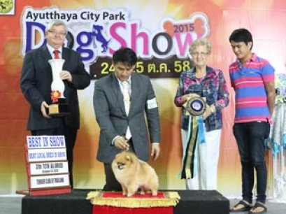37th TCTH ALL BREED CHAMPIONSHIP DOG SHOW