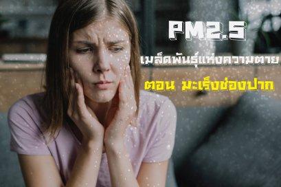 PM2.5 เมล็ดพันธุ์แห่งความตาย ตอน มะเร็งช่องปาก