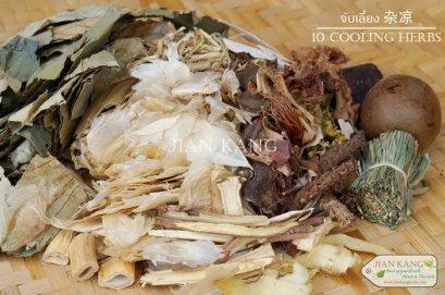 จับเลี้ยง 杂凉 (10 Cooling Herbs) ชุดใหญ่ สำหรับต้มน้ำจับเลี้ยง