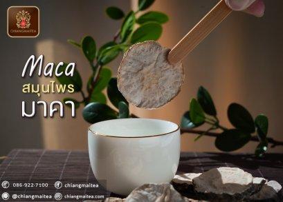 มาคา อบแห้ง (Dried Maca Herbal Tea)