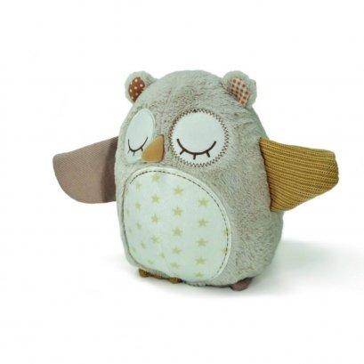 Nighty Night Owl-Smart Sensor