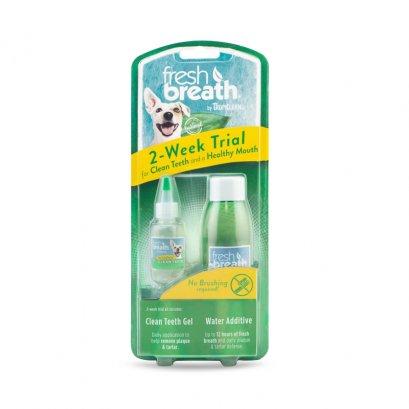 Fresh Breath Dental Trial Kit Counter Display
