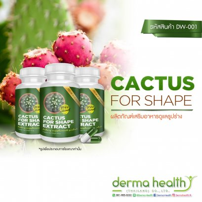 Cactus For Shape