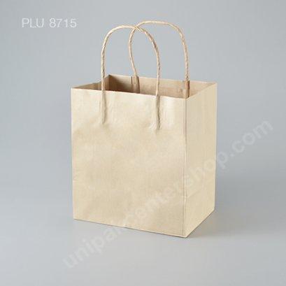 ถุงกระดาษหูเกลียวน้ำตาล 19x13x21 cm