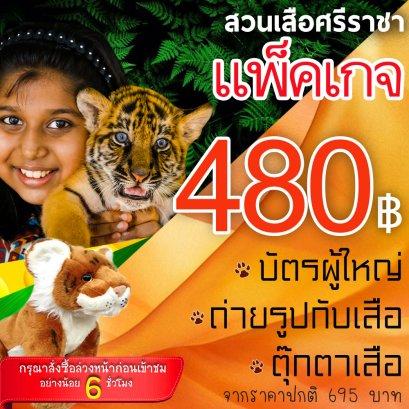 Thai Resident