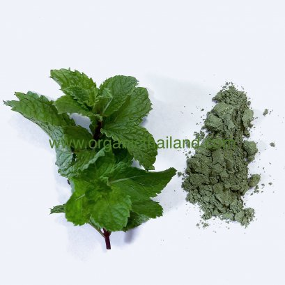 Mentha Powder 100g