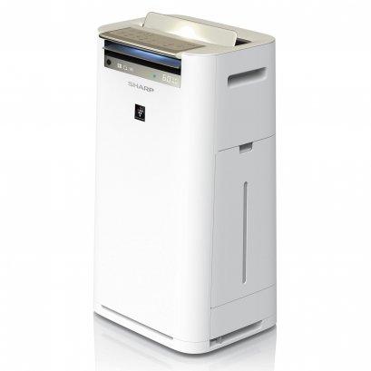 Sharp Air Purifier KC-G60TA-W