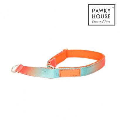 Pawky House - Comfort Collar ปลอกคอสวมใส่สบาย