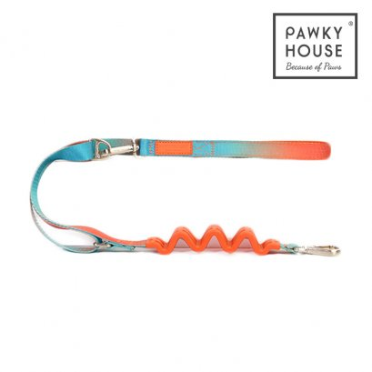 Pawky House - Multifunction Leash สายจูงลดแรงกระชาก