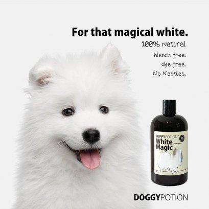 Doggy Potion - White Magic Shampoo ขนาด 500ml.