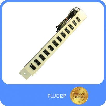 PLUG12P
