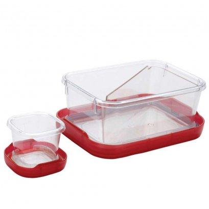 กล่องอาหารล็อคท้อป 0.9 ลิตร สีแดง l OXO GG Locktop lunch 3.8 cup