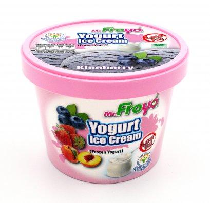 Mr.Froyo Yogurt Ice Cream (BLUEBERRY)