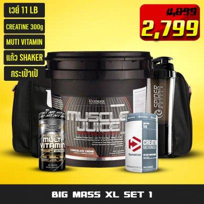 BIG XL V1 SET