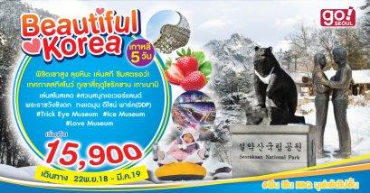 ทัวร์เกาหลี Beautiful Korea เกาหลี 5 วัน 3 คืน