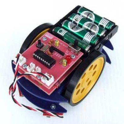 หุ่นยนต์ MICRO PIC