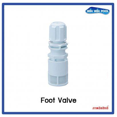 Foot valve chemicals dosing pump.PVDF-T FPM Seal ฟุตวาล์ว ปั๊มจ่ายสารเคมีสำหรับจ่าย 4x6mm.