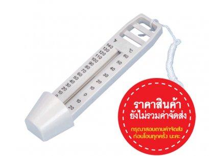Economy Thermometer