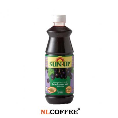 Sunup Black Current