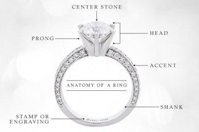 Anatomy of a Ring ส่วนประกอบต่างๆบนแหวน