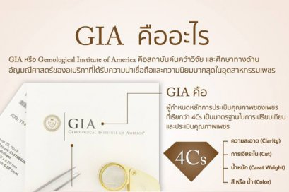 What is GIA?