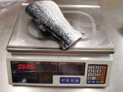 หางปลาแซลมอน