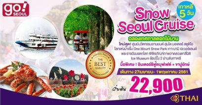 SNOW SEOUL CRUISE BY TG