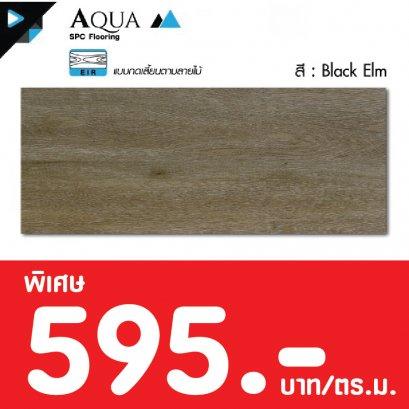 Aqua (EIR) : Black Elm