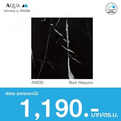 Aqua Marble : Black Marquina