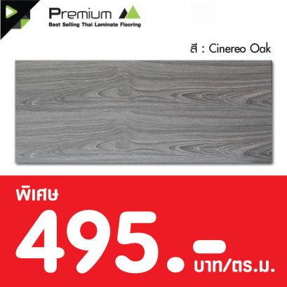 Laminate : Cinereo Oak 12 มม.