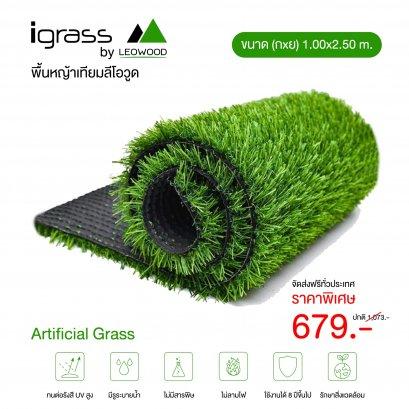 พื้นหญ้าเทียมสีเขียว รุ่น igrass ความสูง 2 ซม. ขนาด 1 ม. x 2.5 ม.