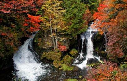 (ชมใบไม้เปลี่ยนสี) ทัวร์เอเชีย ญี่ปุ่น ฮอกไกโด ซับโปโร่ โอตารุ 5 วัน 3 คืน (TG)