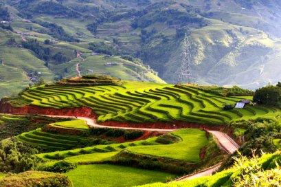 (รายการแนะนำ!!) ทัวร์เอเชีย เวียดนามเหนือ ฮานอย-ซาปา 4 วัน 3 คืน  บินไทยไลอ้อนแอร์ (SL)