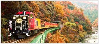 (ชมใบไม้เปลี่ยนสี) ทัวร์เอเชีย ญี่ปุ่น โอซาก้า อาราชิยาม่า นารา 5 วัน 3 คืน บินการบินไทย (TG)