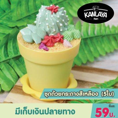 ชุดถ้วยกระถาง สีเหลือง(5ใบ)