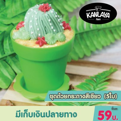 ชุดถ้วยกระถาง สีเขียว (5ใบ)