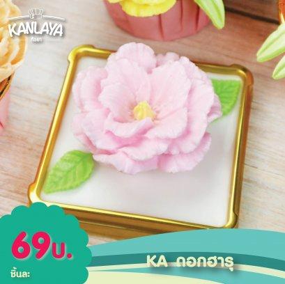KA ดอกฮารุ