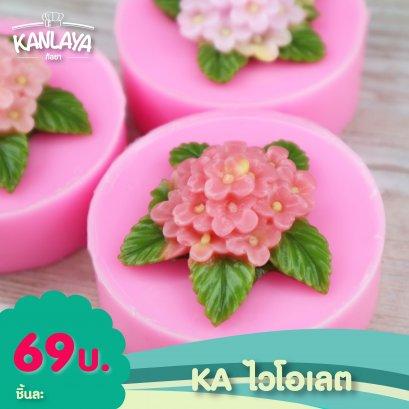 KA ดอกไวโอเลต