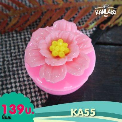 KA55 (H5084)