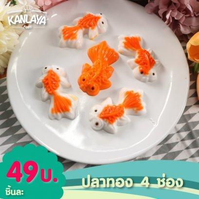 ปลาทอง 4 ช่อง (5.2.1)
