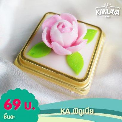 KA พิทูเนีย