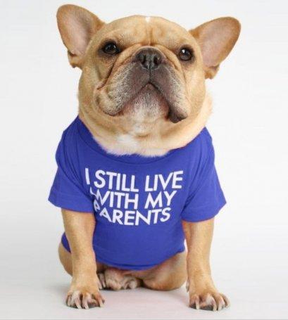Dog Round Neck T-shirt